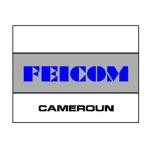 FEICOM