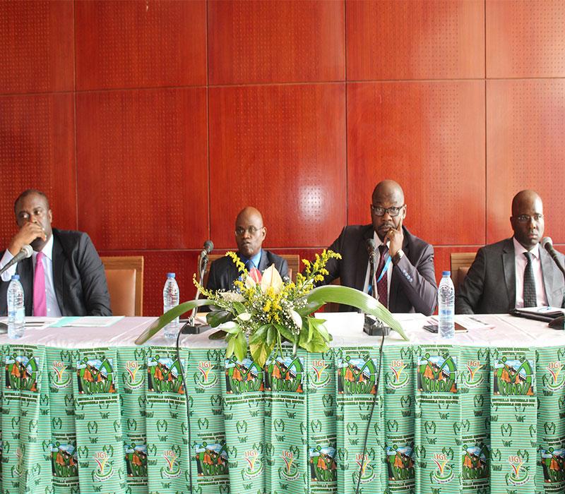 © Direction Générale des Impots du Cameroun